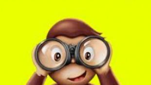 Kiállítás nyílt a háborús majom történetéből