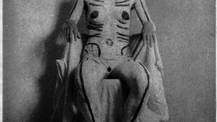 Magyar lány képét állította ki a londoni Tate Modern