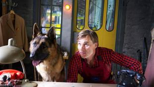 Díjat nyert a leghíresebb magyar kutya
