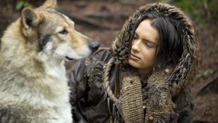 Farkasokkal szenvedő