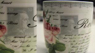 Hitler képmásával adtak el teáscsészéket