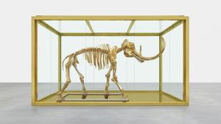 Óriási mamutcsontváz Cannes-ban