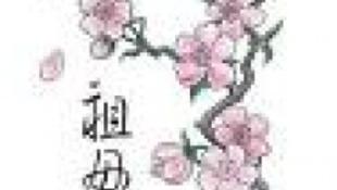 Koncert és vérző cseresznyevirág Japánért
