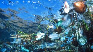 Műanyagszeméttől fuldoklanak Ausztrália parti vizei