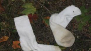 Büdös zoknival a szúnyogok ellen!