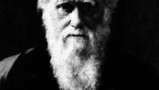 Kiállítják Darwin kincseit