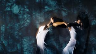 Monocrossing, a videójátékos táncelőadás