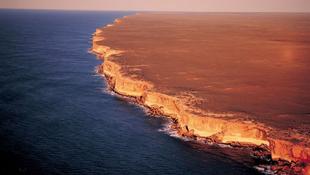 Ősi madármaradványokat találtak egy ausztrál barlangban