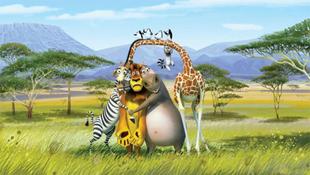 Mindenütt arat a Madagaszkár 2