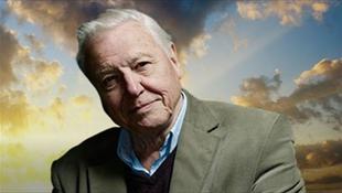 Attenborough újra a Nagy-korallzátonynál forgat