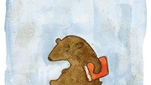 Képmagnó-szemű medve a szekrényben