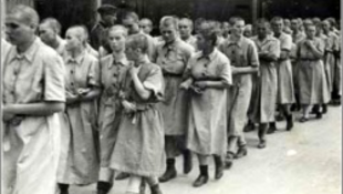 """Ungvári polgármester szerint """"agyrém"""" a temetői holokauszt emlékmű"""