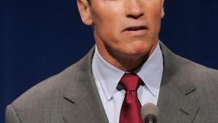 Az egész világ előtt kért bocsánatot Schwarzenegger