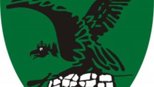 Százmilliós támogatáson vitázik Tatabánya és a megye