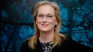 Meryl Streep harcba szállt a nők jogaiért