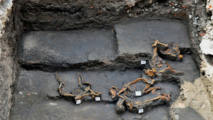 Azték kutyasírt találtak