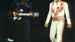 Elhunyt a legendás gitáros
