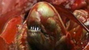Újra beindul a trancsírozás - készül a kultikus horror nulladik része