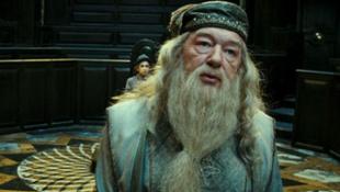 Dumbledore professzornak fogalma sincs a Harry Potterről