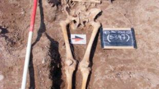 Rejtélyes csontokat találtak a templomnál