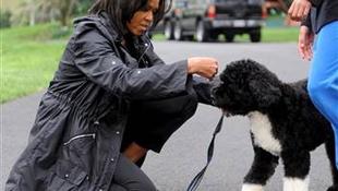 Az Obama család új tagja beteges lábfetisiszta!