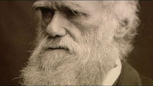 """Darwin """"kölcsönvette"""" a természetes szelekció elméletet"""