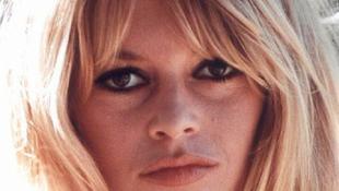 Brigitte Bardot 79 éves