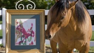 Egy lóban reinkarnálódott Monet?