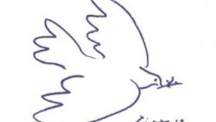 A galambokban több rejlik, mint gondolnánk