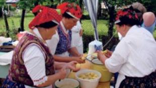 Öt mázsa krumplival állítottak fel rekordot