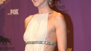Céline Dion lefolyt a színpadról