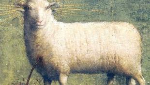Feltámadt a csodálatos bárány