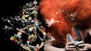 Björk az iskolákat is meghódítja