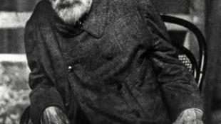 Értékes Renoir-gyűjteményt árvereznek el