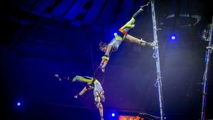 Országszerte terjed az elképesztő cirkusz