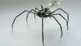 Újrahasznosított pókok a terítéken