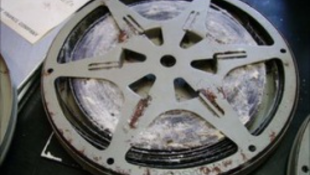 Filmeken támadnak a káros gombák