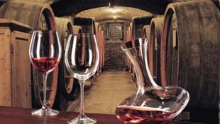 A bor filozófiája lengyelül