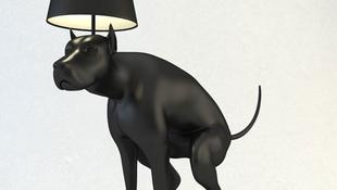 Itt a világító kutyakaki!