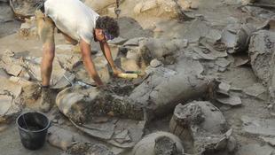 Ókori borospincét találtak