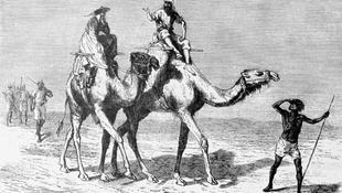 Rabszolgából angol Lady – egy magyar lány kalandos története