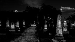 Tárlatvezetés a temetőben