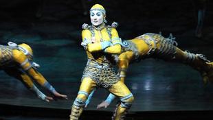 Cirque du Sziget 2013