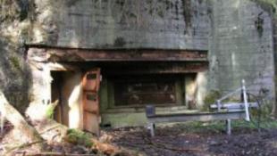 Kincsekre lelt a rendőrség egy bunkerben