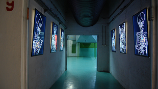 Művészek költöznek Tito bunkerébe