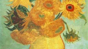 Megfejtették Van Gogh napraforgóinak titkát