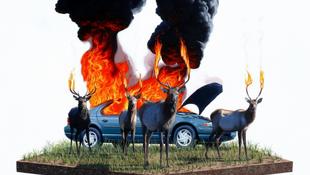 Felgyújtottak egy autót a szarvasok