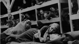 Kiállítás a Buchenwaldba hurcolt asszonyokról