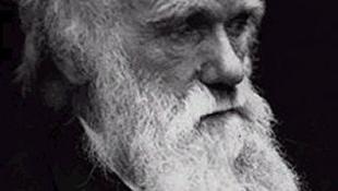 Még ma is hat Darwin elmélete