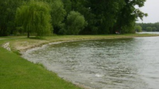 Kénköves pokollá lett a tatai Öreg-tó!